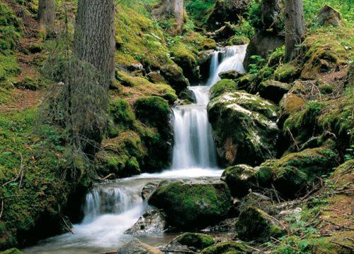 Fiumi e torrenti