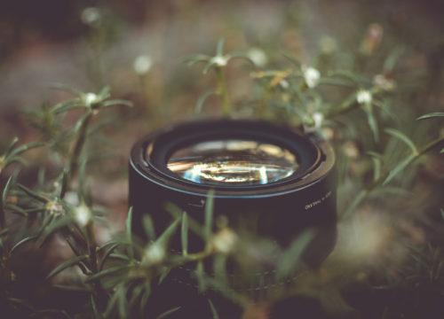 T-Green Film